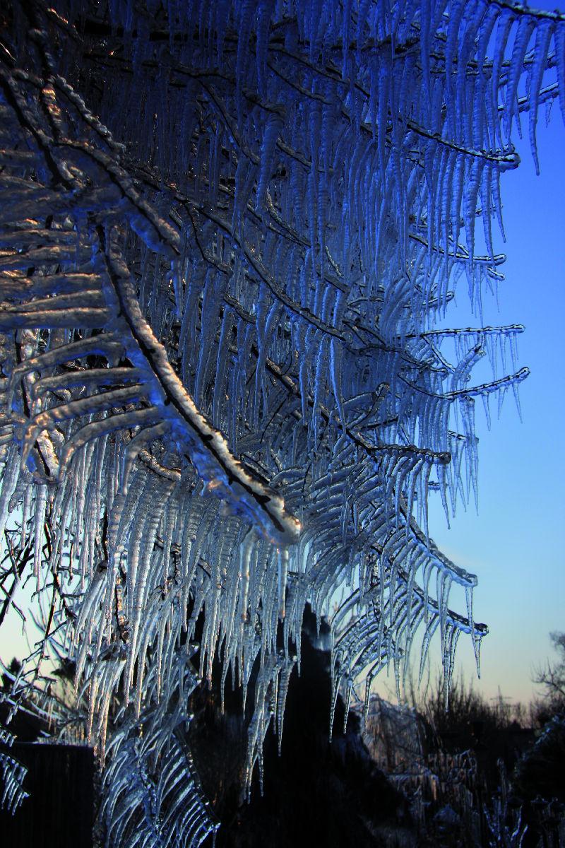 """Rund um den Garten – """"Gut gerüstet in den Winter"""""""