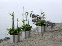 GKR mit Pflanzen Wohnen 9