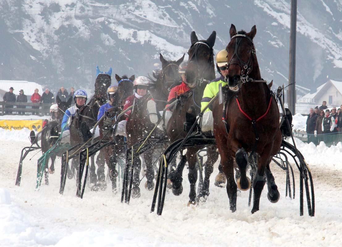 Trabrennsport in Tirol – Hochkarätiges, internationales Trabrennen lockt europäische Stars nach Kirchberg