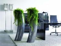 Pures Design und gesunde Luft mit Pflanzen am Arbeitsplatz